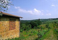 Old stone buildings and vineyards in romantic Tuscany in Chianti District Ital