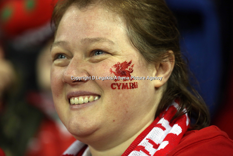 Pictured: A welsh supporter. Saturday 08 November 2014<br /> Re: Dove Men Series rugby, Wales v Australia at the Millennium Stadium, Cardiff, south Wales, UK.