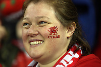 Pictured: A welsh supporter. Saturday 08 November 2014<br />