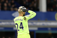 Tim Howard puts his head in his hand during the Barclays Premier League match between Everton and Swansea City played at Goodison Park, Liverpool