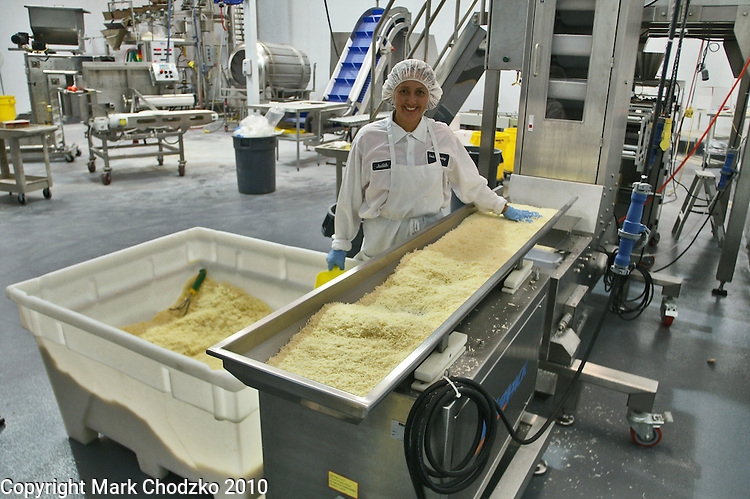 Woman works in cheese manufacturing facilty.
