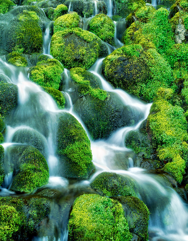 M00175M.tiff Mossy waterfall. Bird Creek Meadows, Washington