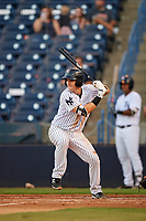 Tampa Yankees first baseman Tim Lynch (25) at bat during a game against the Palm Beach Cardinals on July 25, 2017 at George M. Steinbrenner Field in Tampa, Florida.  Tampa defeated Palm beach 7-6.  (Mike Janes/Four Seam Images)