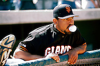 Marvin Benard of the San Francisco Giants at Scottsdale Stadium in Scottsdale,Arizona during 1996 spring training. (Larry Goren/Four Seam Images)