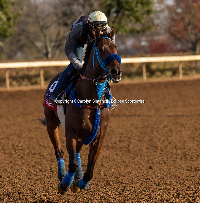 November 5, 2020: Collusion Illusion, trained by trainer Mark Glatt, exercises in preparation for the Breeders' Cup Sprint at Keeneland Racetrack in Lexington, Kentucky on November 5, 2020. Carolyn Simancik/Eclipse Sportswire/Breeders Cup
