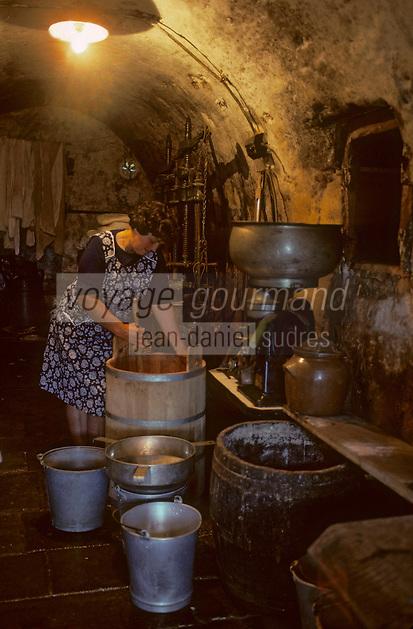 Europe/France/Auvergne/15/Cantal/env de Vic sur Cère: fabrication du cantal au buron<br /> PHOTO D'ARCHIVES // ARCHIVAL IMAGES<br /> FRANCE 1980