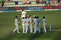 The Black Caps celebrate Tim Southee's dismissal of Joe Denley during day one of the international cricket 1st test match between NZ Black Caps and England at Bay Oval in Mount Maunganui, New Zealand on Thursday, 21 November 2019. Photo: Dave Lintott / lintottphoto.co.nz