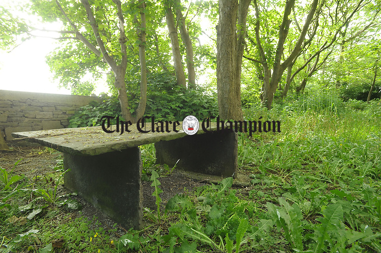 A view of what is believed to be a burial site for stillborn children, who were born at the old Kilrush District hospital maternity unit. The site,  in a wooded area, is located on the Cooraclare road across from the site of what was previously the Kilrush Poor Law Union Workhouse. In the late twenties it was then utilised as a  Mother And Babies home, which it is believed was closed in the early 1930's. Photograph by John Kelly.