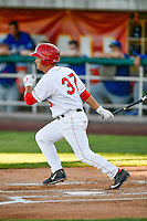 Matt Thaiss (37) of the Orem Owlz at bat against the Ogden Raptors in Pioneer League action at Home of the Owlz on June 25, 2016 in Orem, Utah. Orem defeated Ogden 4-1.  (Stephen Smith/Four Seam Images)