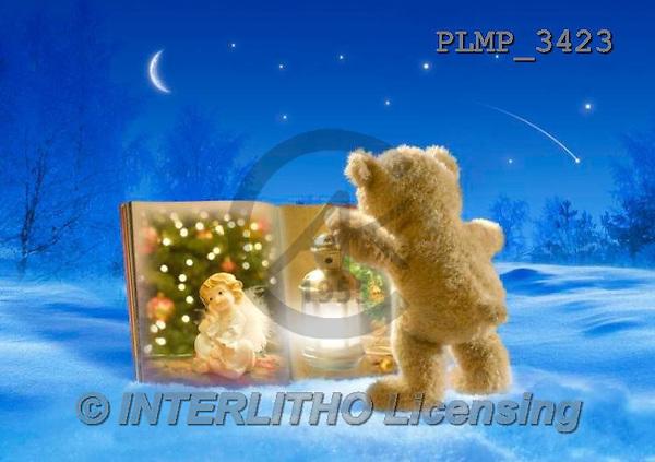 Marek, CHRISTMAS ANIMALS, WEIHNACHTEN TIERE, NAVIDAD ANIMALES, teddies, photos+++++,PLMP3423,#Xa# in snow,outsite,