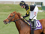 LEXINGTON, KY - APRIL 09: #10 Undrafted and jockey Joe Bravo win the 20th running of The Shakertown (Grade 2) $200,000 at Keeneland race course for owner Wes Welker and Sol Kumin and trainer Wesley Ward.  April 9, 2016 in Lexington, Kentucky. (Photo by Candice Chavez/Eclipse Sportswire/Getty Images)
