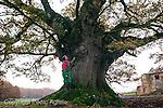 08-12-2011 En la provincia de Lugo, imagen del Carballo de Freán, en Cazás. Xermade.En la foto Manuel Miragallos Souto, encargado de la Granja El Roble. Foto:Pedro Agrelo