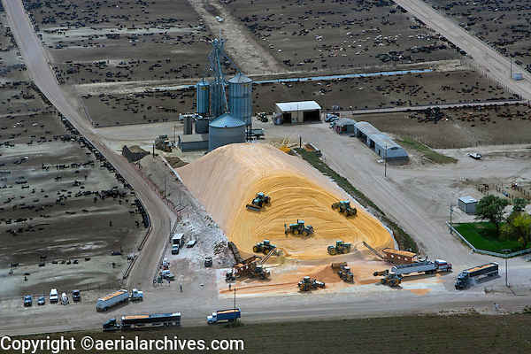 aerial photograph cattle feedlot Nebraska