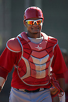 Los Angeles Angels minor league catcher Sandy Martinez #20 during an instrasquad game at the Tempe Diablo Stadium Complex on October 10, 2012 in Tempe, Arizona.  (Mike Janes/Four Seam Images)