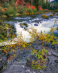 Rogue River National Wild and Scenic River, Rogue River National Forest, Oregon