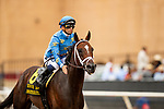 JULY 24, 2021: Smooth Like Strait with Umberto Rispoli gets a pat after running second in the Eddie Read Stakes at the Del Mar Fairgrounds in Del Mar, California on July 24, 2021. Evers/Eclipse Sportswire/CSM