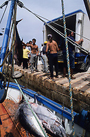 ITALY, Sicily, Egedian island Favignana, La Mattanza, traditional fishing of bluefin Tuna fish, shipping to Japan