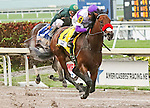 HALLANDALE BEACH, FL -APRIL 02:   #4 Nyquist (KY) with jockey Mario Qutierrez on board stays undefeated as he wins the Florida Derby GI on April 2nd, 2016 at Gulfstream Park in Hallandale Beach, Florida. (Photo by Liz Lamont/Eclipse Sportswire/Getty Images)