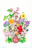 Studio Scans of cut flower arrangements on white backgrounds, spring flowers for pressed flowers, sweetpeas Lathyrus odoratus, ranunculus, Dianthus, Campanula, Allium chives herbs, clematis, nasturtium foliage Tropaeoleum, Viola pansies, Salvia, Nicotiana, picked, heirloom flowers