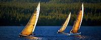 Sailboats in race. Lake Tahoe. California