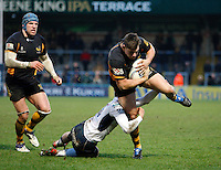 Photo: Richard Lane/Richard Lane Photography. London Wasps v Rugby Mogliano. Amlin Challenge Cup. 12/01/2013. Wasps' Tom Lindsay breaks through for a try.