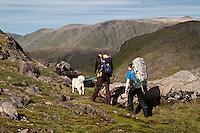 To personer og en hund går til fots på Seiland. ---- Two persons and a dog hiking on the island Seiland.
