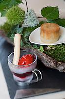 """Europe/France/Rhône-Alpes/42/Loire/Saint-Just Saint-Rambert: Dessert """" Suggestion d'une promenade en sous-bois"""" avec sa  crème glacée à la mure,et son financier  à la poire et noix ,recette de Christophe Roure Chef du Restaurant """"Le Neuvième Art"""""""