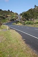 New Zealand.  Highway 12 Scenery between Paihia and Hokianga.