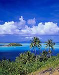 Bora Bora, French Polynesia   <br /> Motu Piti uu Uta in the tropical blue waters of Bora Bora lagoon with Coconut Palm trees (Cocos nucifera) under cumulus clouds