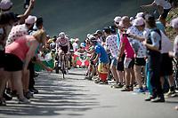 Polka Dot Jersey / KOM leader Tim Wellens (BEL/Lotto-Soudal) up the Tourmalet (HC/2115m/19km @7.4%)<br /> <br /> Stage 14: Tarbes to Tourmalet(117km)<br /> 106th Tour de France 2019 (2.UWT)<br /> <br /> ©kramon