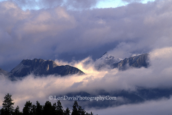 Mountaintops in Clouds, Canadian Rockies  #L54