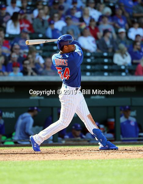 Charcer Burks - Chicago Cubs 2019 spring training (Bill Mitchell)
