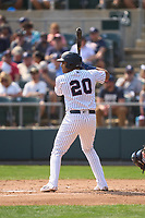 Somerset Patriots Dermis Garcia (20) bats during a game against the Hartford Yard Goats on September 12, 2021 at TD Bank Ballpark in Bridgewater, New Jersey.  (Mike Janes/Four Seam Images)