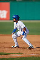 Dunedin Blue Jays Norberto Obeso (5) leads off first base during a Florida State League game against the Jupiter Hammerheads on May 15, 2019 at Jack Russell Memorial Stadium in Clearwater, Florida.  Jupiter defeated Dunedin 5-1 in a seven innings, the first game of a doubleheader.  (Mike Janes/Four Seam Images)