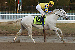 2 year old champion Hansen, with Ramon Dominguez, easily win the Grade III Gotham Stakes for 3 year olds, going 1 1/16 mile, at Aqueduct Racetrack.  Trainer M. J. Maker.  Owner Kendall E. Hansen & Harvey Diamond