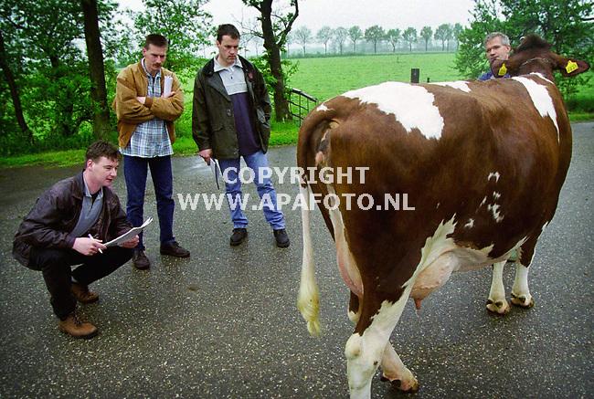 Gendringen , 030500  Foto : Koos Groenewold / APA <br />De keurmeesters keuren de koe Anneke 46 ( vader Beverlake Nick ) van boer Han Wentink ( blauwe overal)<br /><br />vlnr : Robert Overvelde , Dinand Lutke Willink   en Arnold van Dee .