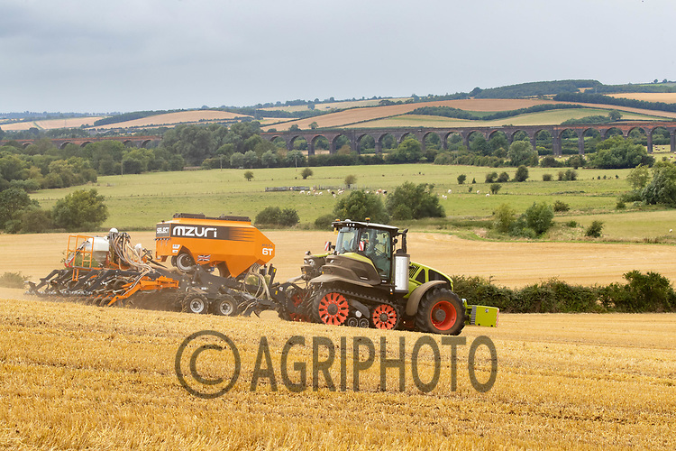 14-8-2021 Drilling oilseed rape in Rutland<br /> ©Tim Scrivener Photographer 07850 303986<br />      ....Covering Agriculture In The UK....