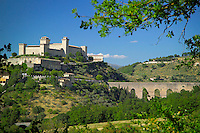 Umbria, Hiking the Olive Trail in Italy