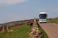 tourist bus vineyard dezize les maranges santenay cote de beaune burgundy france
