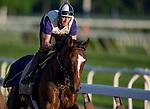 June 4, 2014: Tonalist prepares for the Belmont Stakes at Belmont Park in Elmont, New York. Jon Durr/ESW/CSM