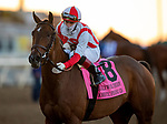 November 28, 2020: Domestic Spending with Irad Ortiz Jr. defeats Smooth Like Straight to win  the  Hollywood Derbyat Del Mar Racecourse in Del Mar, California on November 28, 2020. Evers/Eclipse Sportswire/CSM