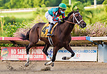 JULY 03, 2021: Consolador (PR), #4, ridden by Edwin Castro wins the Copa San Juan (Grade 1) and becomes the 14th horse to win the Puerto Rican Triple Crown at Hipódromo Camarero in Canóvanas, Puerto Rico on July 03, 2021. Carlos Calo/Eclipse Sportswire/CSM