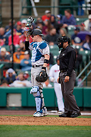 Charlotte Knights catcher Zack Collins (8) and umpire Mike Wiseman during an International League game against the Rochester Red Wings on June 16, 2019 at Frontier Field in Rochester, New York.  Rochester defeated Charlotte 3-2 in the second game of a doubleheader.  (Mike Janes/Four Seam Images)