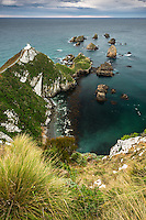 Dawn at Nugget Point lighthouse with rocky islets, Catlins, Southland, New Zealand, NZ