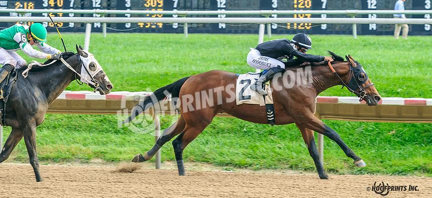 Jarlian winning at Delaware Park on 10/7/21