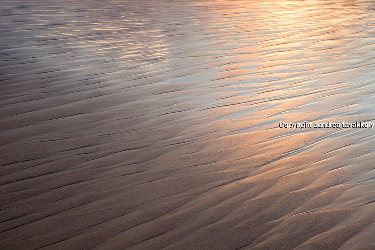 Sunlight reflecting on wet sand, Surf Beach, Lompoc Ca.