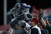 Somerset Patriots mascot Sparky greets fans during the game against the Altoona Curve at TD Bank Ballpark on July 24, 2021, in Somerset NJ. (Brian Westerholt/Four Seam Images)