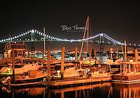 Street lamps illuminate the boats at Conanicut Marina