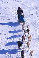 D Jonrowe on Trail Skwentna River Bank Iditarod 99 AK