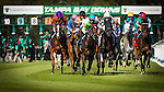 OLDSMAR, FL - JANUARY 21: Horse Racing coverage on Skyway Festival Day at Tampa Bay Downs on January 21, 2017 in Oldsmar, Florida. (Photo by Douglas DeFelice/Eclipse Sportswire/Getty Images)
